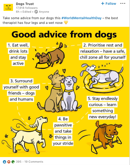 DogsTrust advice - World Mental Health Day